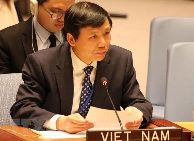 Việt Nam chủ trì họp riêng trực tuyến tại Hội đồng Bảo an - 1