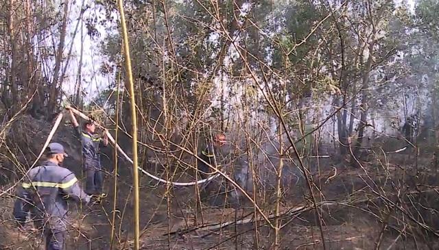 Đà Nẵng: Cháy rừng keo gần sân bay - 2