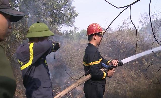 Đà Nẵng: Cháy rừng keo gần sân bay - 4