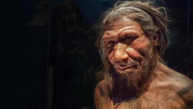 Siêu máy tính tìm ra nguyên nhân tuyệt chủng của người Neanderthal - 1