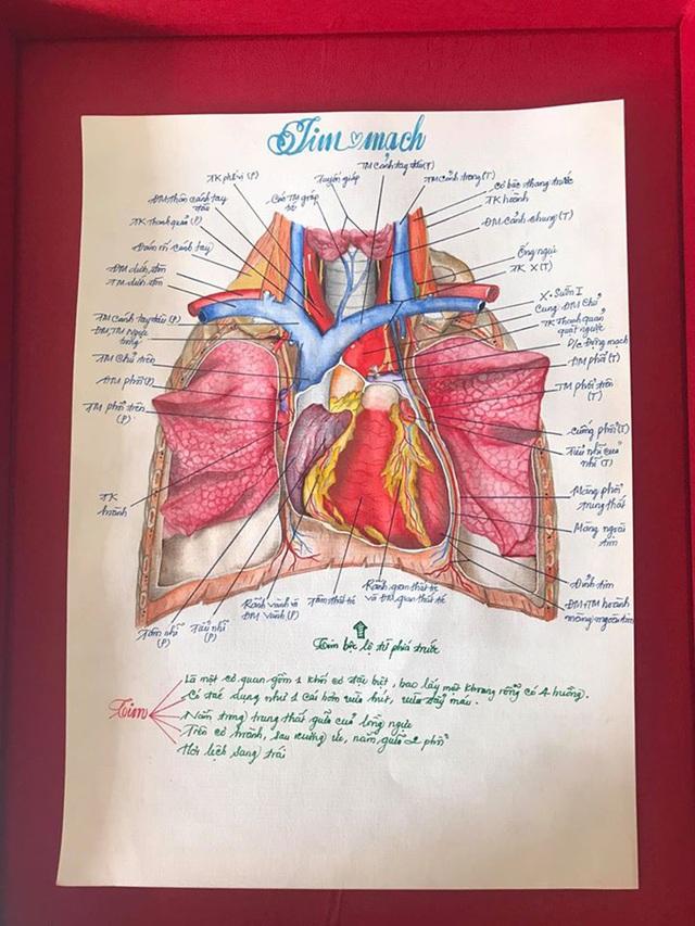 Nam sinh có biệt tài vẽ giải phẫu cơ thể người chi tiết khó tin - 3