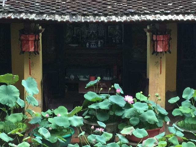 """Nhà gỗ cổ """"độc nhất"""" Bắc Bộ, bao quanh sân là vườn sen thơm ngát - 2"""