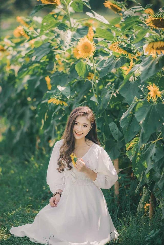 Cựu nữ sinh Ngoại thương khoe sắc bên hoa hướng dương - 5