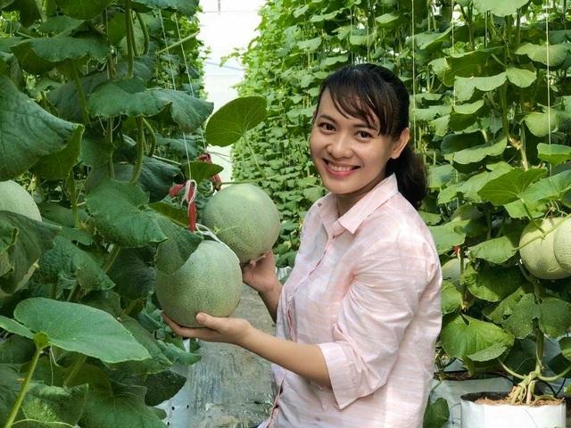 Thạc sĩ nghỉ việc ở cơ quan nhà nước về dọn vườn trồng dưa lưới sạch - 1