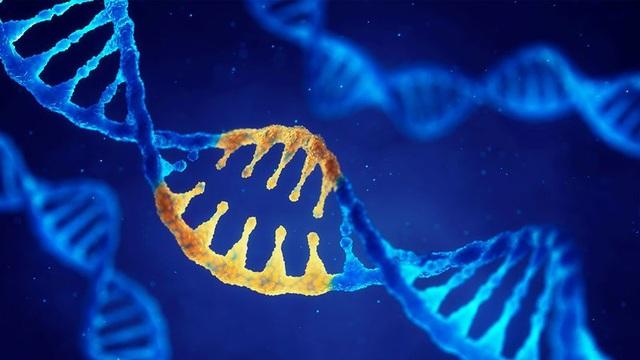 """Lần đầu phát hiện gen di truyền """"điều khiển"""" quá trình di căn của ung thư - 2"""