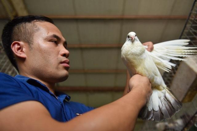 Bỏ nghề lập trình viên về làm nông dân nuôi chim thu 3 tỷ đồng/năm - 2