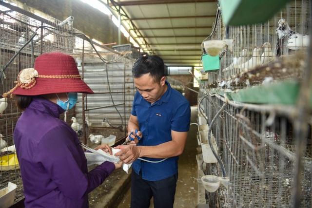 Bỏ nghề lập trình viên về làm nông dân nuôi chim thu 3 tỷ đồng/năm - 6