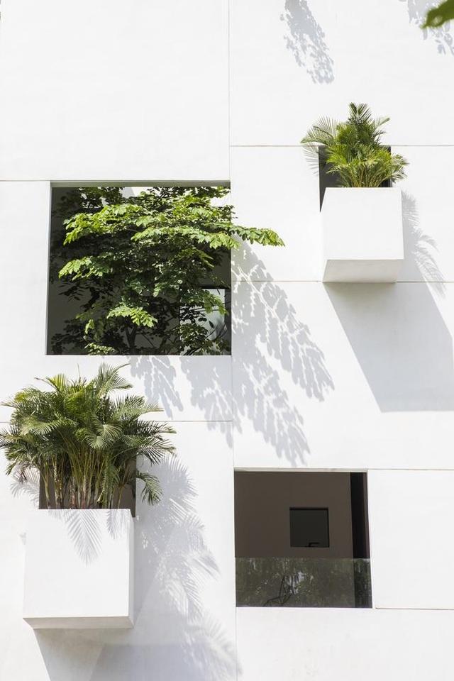 """Nhà trên mây"""" giữa lòng Sài Gòn với các khu vườn lơ lửng độc lạ - 3"""