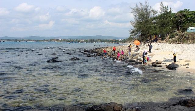 Phú Yên: Thành lập tổ bảo vệ để bảo tồn rạn san hô Hòn Yến - 2