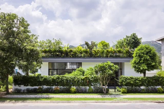 """Biệt thự """"độc nhất, vô nhị"""" trồng cả rừng cây trên mái nhà ở Nha Trang - 2"""