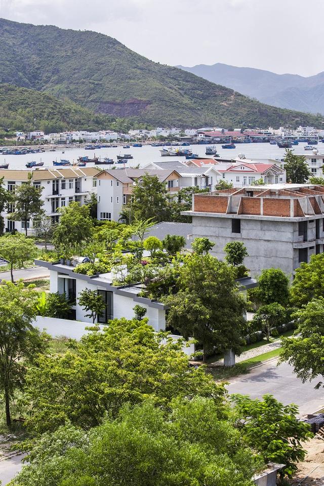 """Biệt thự """"độc nhất, vô nhị"""" trồng cả rừng cây trên mái nhà ở Nha Trang - 1"""