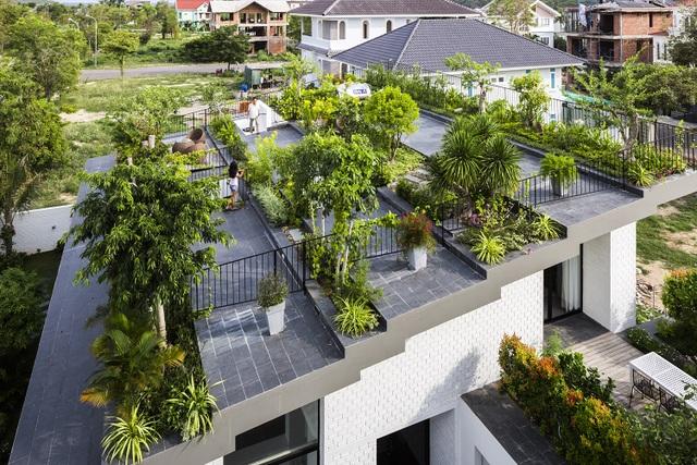 """Biệt thự """"độc nhất, vô nhị"""" trồng cả rừng cây trên mái nhà ở Nha Trang - 3"""