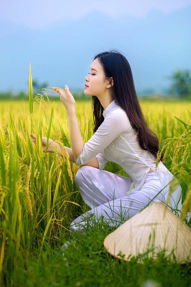Thảo Vi nhận được nhiều lời khen có cánh trong bộ ảnh chụp cùng trang phục áo dài trắng, nón lá giản dị ở cánh đồng lúa.