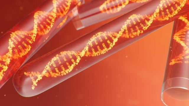 Tìm thấy bộ gen HIV dài nhất, cổ nhất từng được biết đến - 1