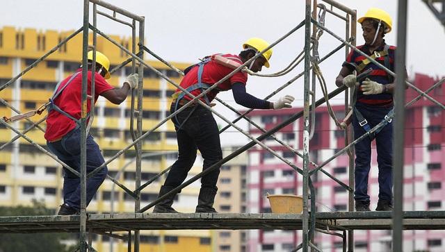 Lao động nhập cư - Ổ dịch Covid-19 tại Singapore - 1