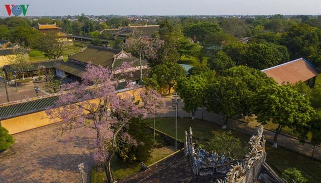 Huế - Thành phố của những sắc hoa mùa hạ - 2