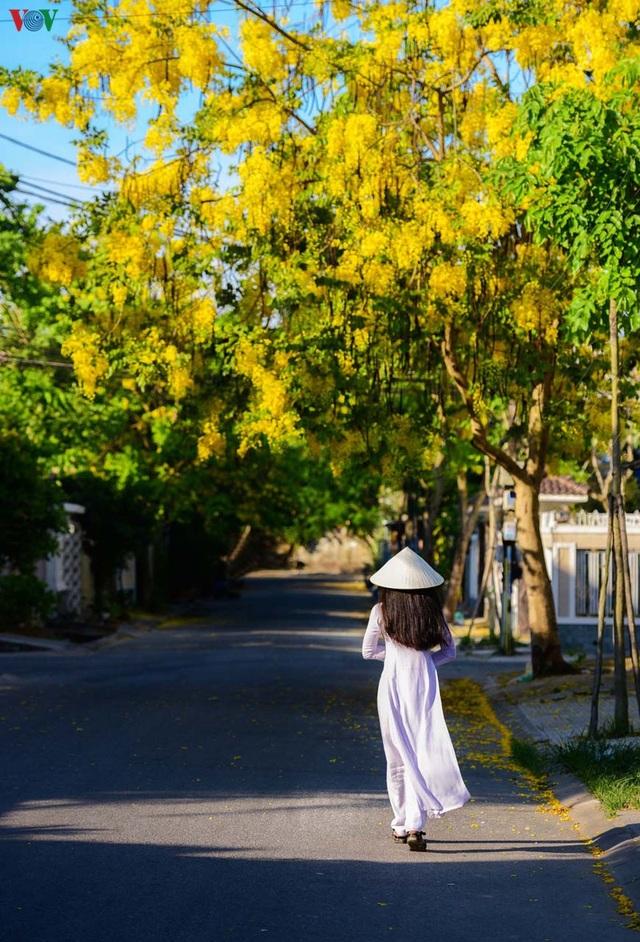 Huế - Thành phố của những sắc hoa mùa hạ - 5