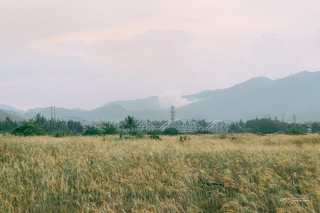 Ngẩn ngơ vẻ đẹp rạn đá Nam Ô ở Đà Nẵng - 6