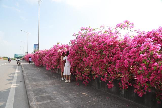 """Phát sốt"""" với con đường hoa giấy đẹp quên lối về ngay gần Hà Nội - 10"""