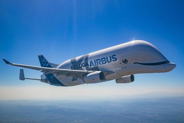 Viễn cảnh thế giới sẽ ra sao nếu không có máy bay? - 3