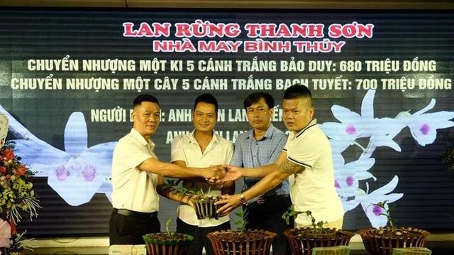 Ngắm vườn lan đột biến, giá trị gần 10 tỷ đồng tại Mê Linh - 16