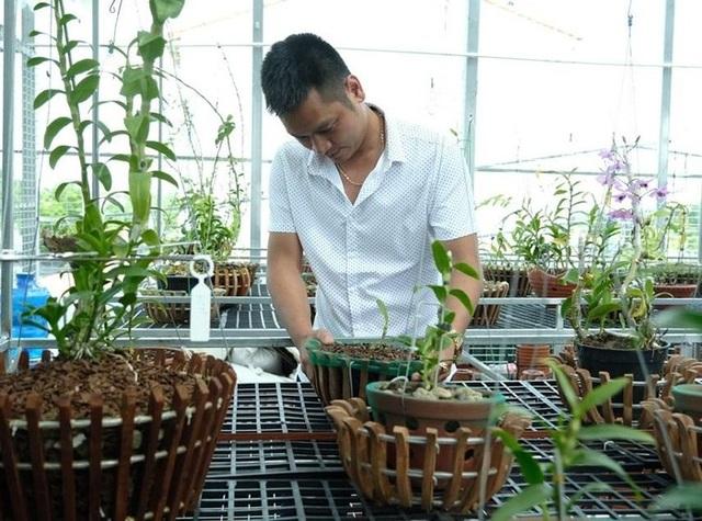 Ngắm vườn lan đột biến, giá trị gần 10 tỷ đồng tại Mê Linh - 7