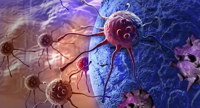 Phát hiện được các khối u ung thư có khả năng tự bảo vệ mạnh mẽ chống virus - 1