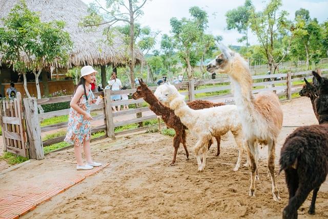 Khám phá thiên đường mùa hè kỳ thú tại Nghệ An - 3