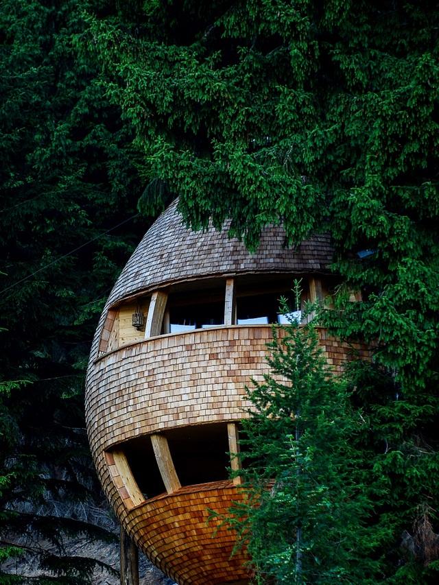 Kỳ lạ ngôi nhà treo mình giữa rừng cây, khách muốn vào phải đi bằng cầu - 3