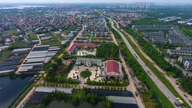 Về thủ phủ trồng hoa gần Hà Nội, người dân lái xe sang đi thăm vườn - 1