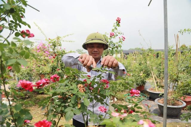Về thủ phủ trồng hoa gần Hà Nội, người dân lái xe sang đi thăm vườn - 7