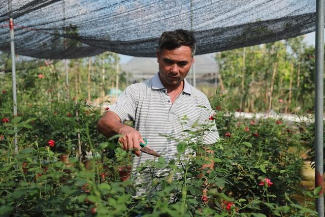 Về thủ phủ trồng hoa gần Hà Nội, người dân lái xe sang đi thăm vườn - 13