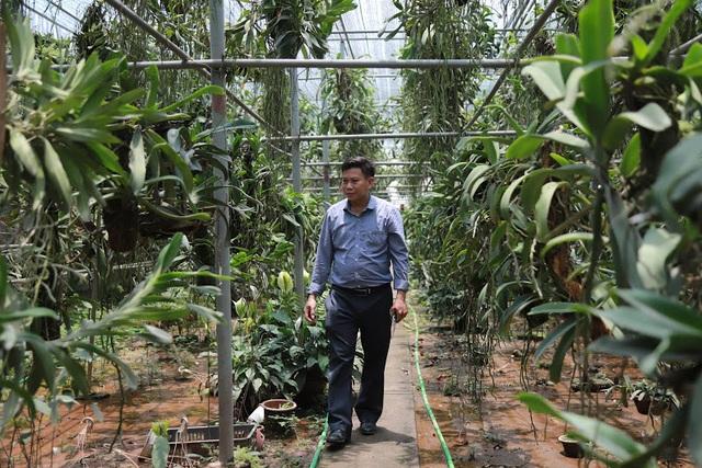 Về thủ phủ trồng hoa gần Hà Nội, người dân lái xe sang đi thăm vườn - 14