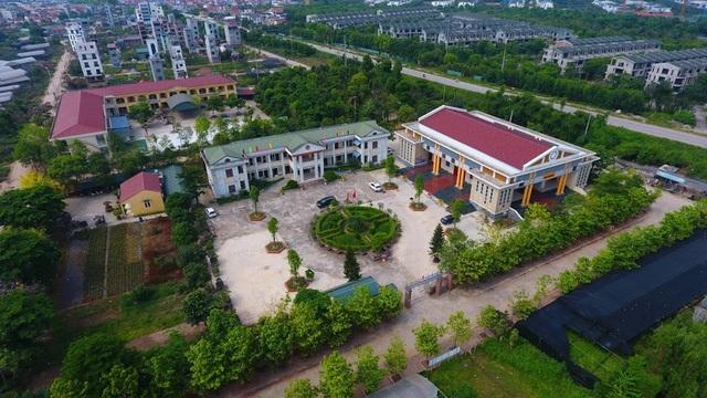 Về thủ phủ trồng hoa gần Hà Nội, người dân lái xe sang đi thăm vườn - 16