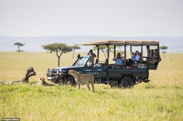 Đến Kenya chiêm ngưỡng những vẻ đẹp độc đáo có một không hai - 5