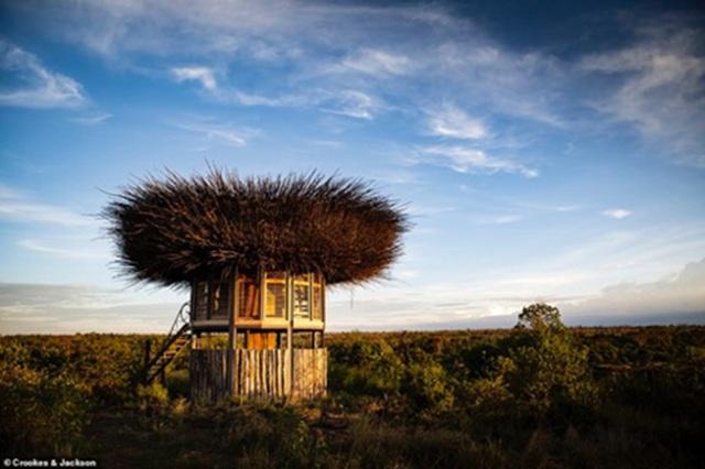 Đến Kenya chiêm ngưỡng những vẻ đẹp độc đáo có một không hai - 8