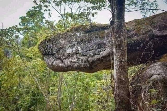 Tìm thấy hang động hình rắn khổng lồ - 4