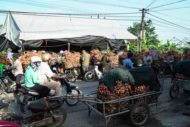 Thương lái nườm nượp thu mua vải Thanh Hà chín sớm - 3