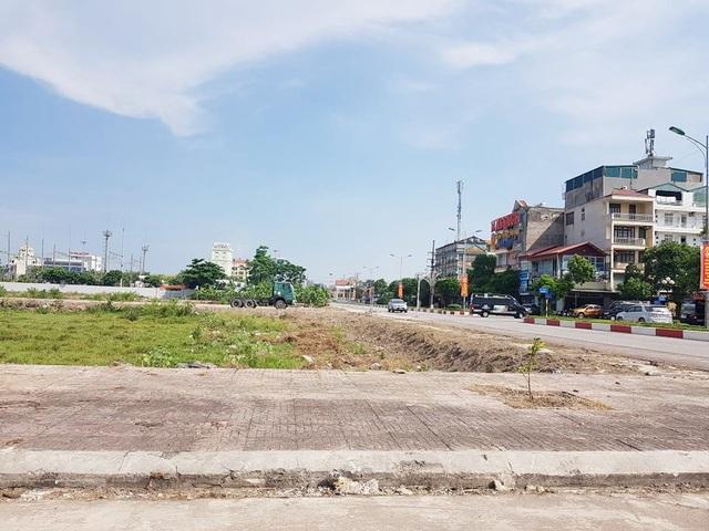 """Bị hủy đấu giá, hơn 20ha """"đất vàng"""" ở TP Ninh Bình tiếp tục bị bỏ hoang - 1"""