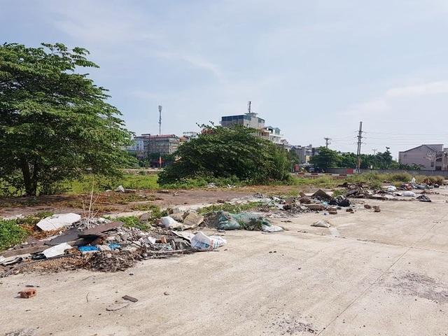 """Bị hủy đấu giá, hơn 20ha """"đất vàng"""" ở TP Ninh Bình tiếp tục bị bỏ hoang - 6"""