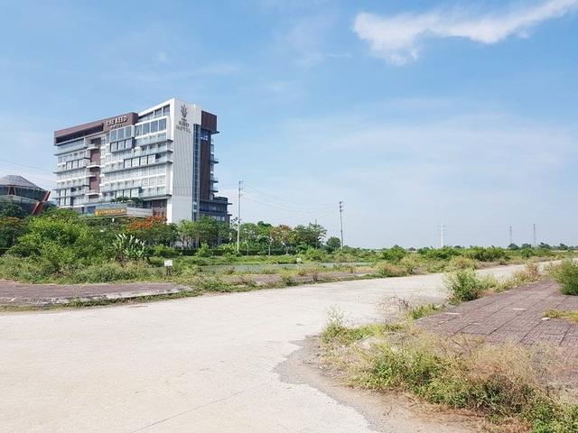 """Bị hủy đấu giá, hơn 20ha """"đất vàng"""" ở TP Ninh Bình tiếp tục bị bỏ hoang - 2"""