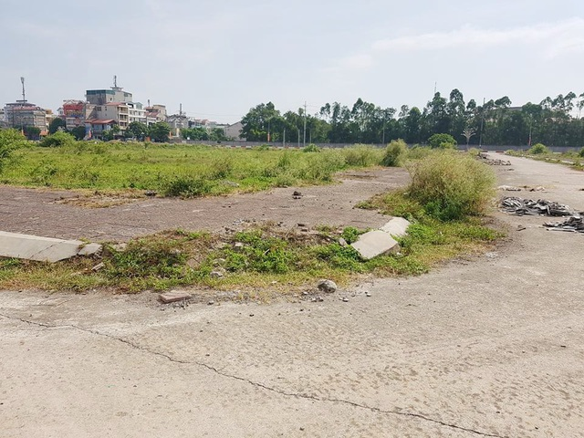 """Bị hủy đấu giá, hơn 20ha """"đất vàng"""" ở TP Ninh Bình tiếp tục bị bỏ hoang - 5"""