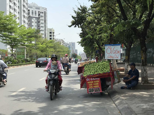 Hoa quả siêu rẻ tràn vỉa hè: Người tiêu dùng cẩn thận tránh sập bẫy - 1