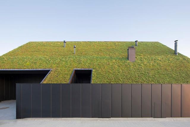 Chiêm ngưỡng nhà mái nghiêng phủ kín cây xanh nằm yên bình ở vùng ngoại ô - 1
