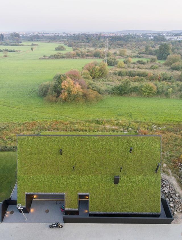Chiêm ngưỡng nhà mái nghiêng phủ kín cây xanh nằm yên bình ở vùng ngoại ô - 2