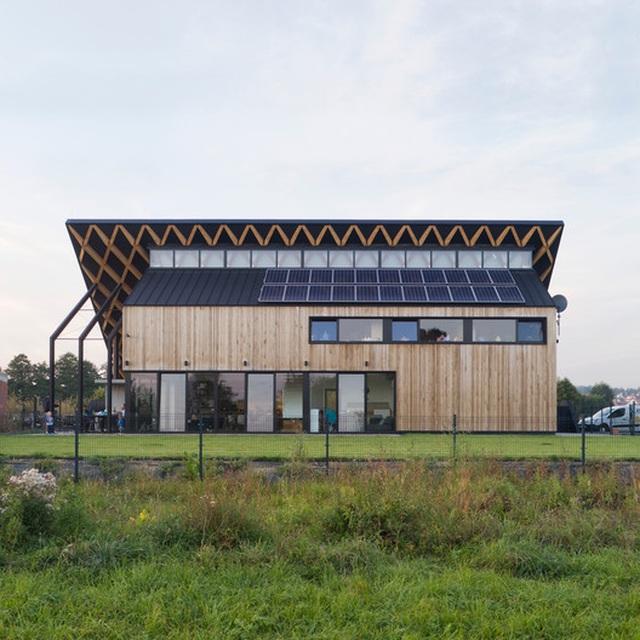 Chiêm ngưỡng nhà mái nghiêng phủ kín cây xanh nằm yên bình ở vùng ngoại ô - 7