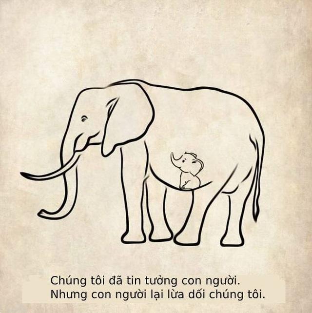 Cộng đồng mạng quốc tế xót xa trước bộ tranh kể về bi kịch của voi mẹ - 13