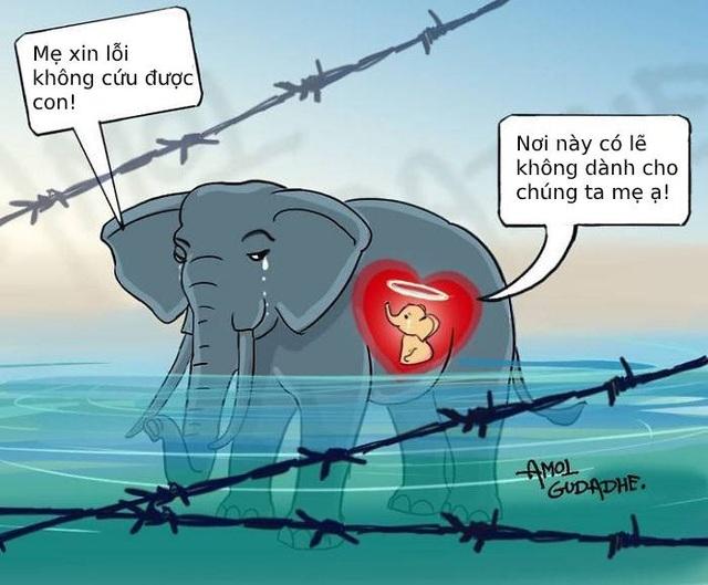 Cộng đồng mạng quốc tế xót xa trước bộ tranh kể về bi kịch của voi mẹ - 11
