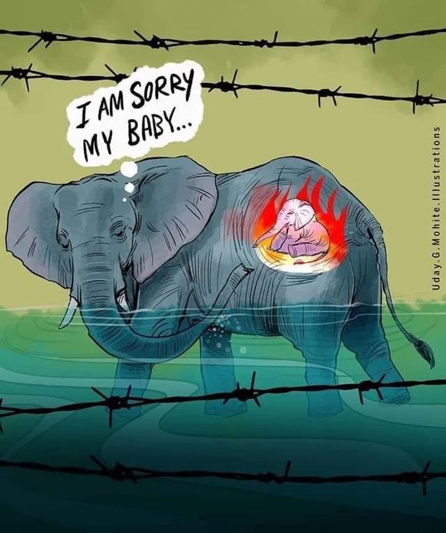 Cộng đồng mạng quốc tế xót xa trước bộ tranh kể về bi kịch của voi mẹ - 10