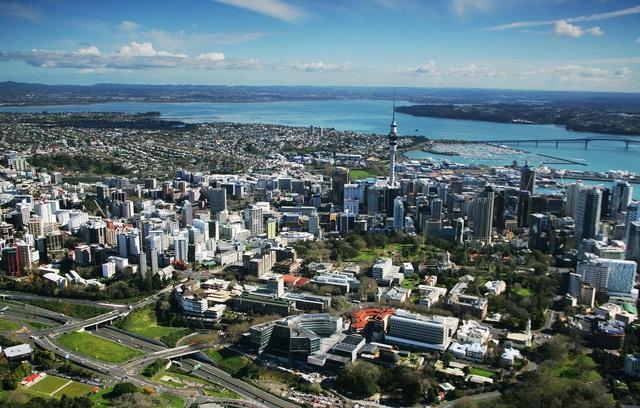 New Zealand cấp nhiều học bổng bậc Thạc sĩ lĩnh vực Kinh doanh - 1